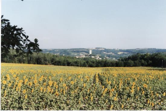 Ville de Montcuq