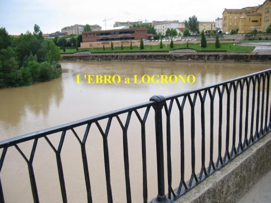 L'Ebro à Logrono